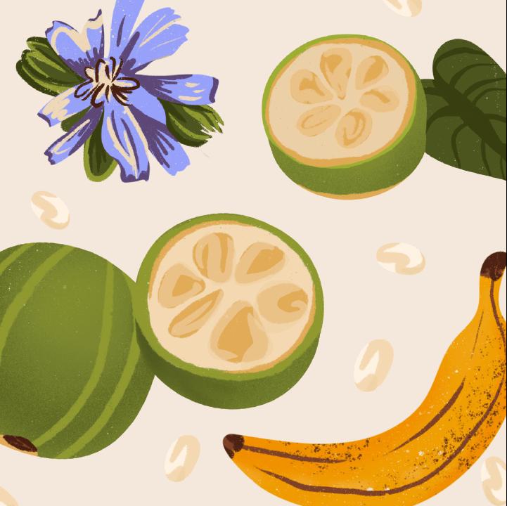 Monkfruit, chicory root flower and bananas