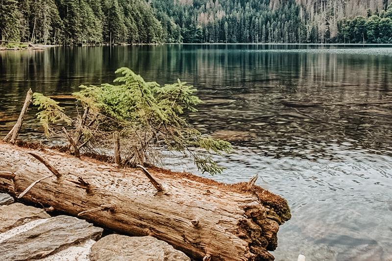 Výlet po šumavských jezerech