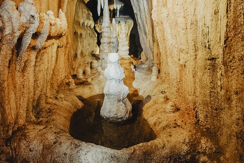 Podzemní svět v ZOO