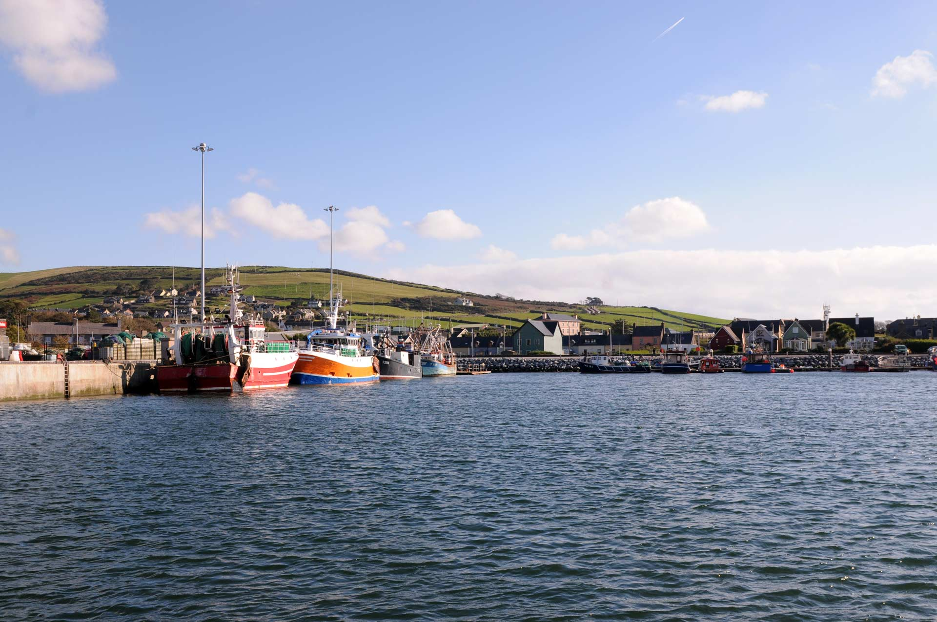 Dingle Harbour on a sunny day with fishing boats