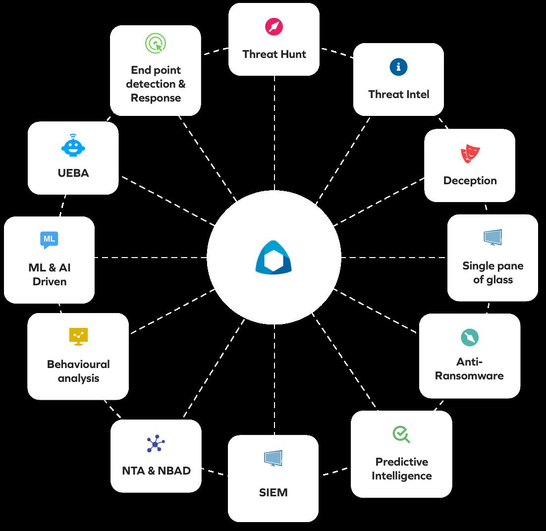 The BluSapphire platform snapshot