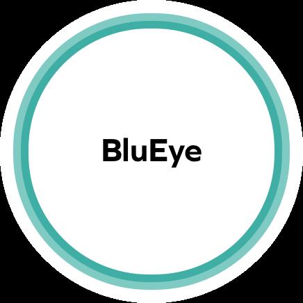 BluEye Component