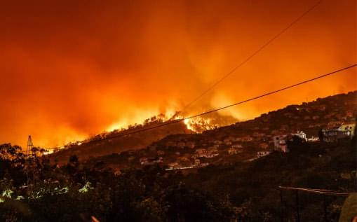 a photo of wildfire on a hill