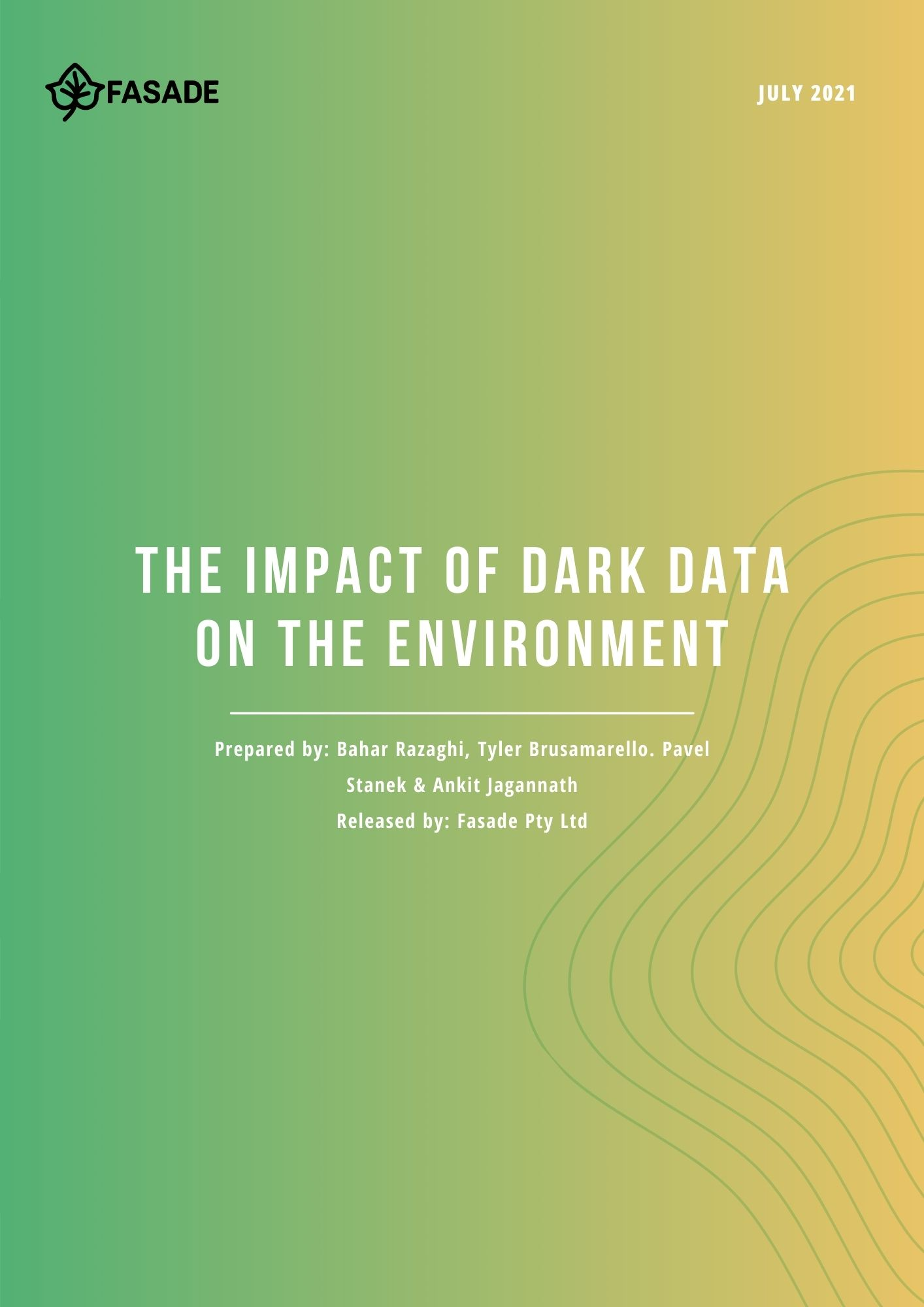 Fasade White Paper provides information on what the negative impacts of data on businesses are and how to deal with it.