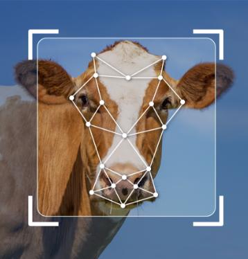 Farm4Trade Lab Logo