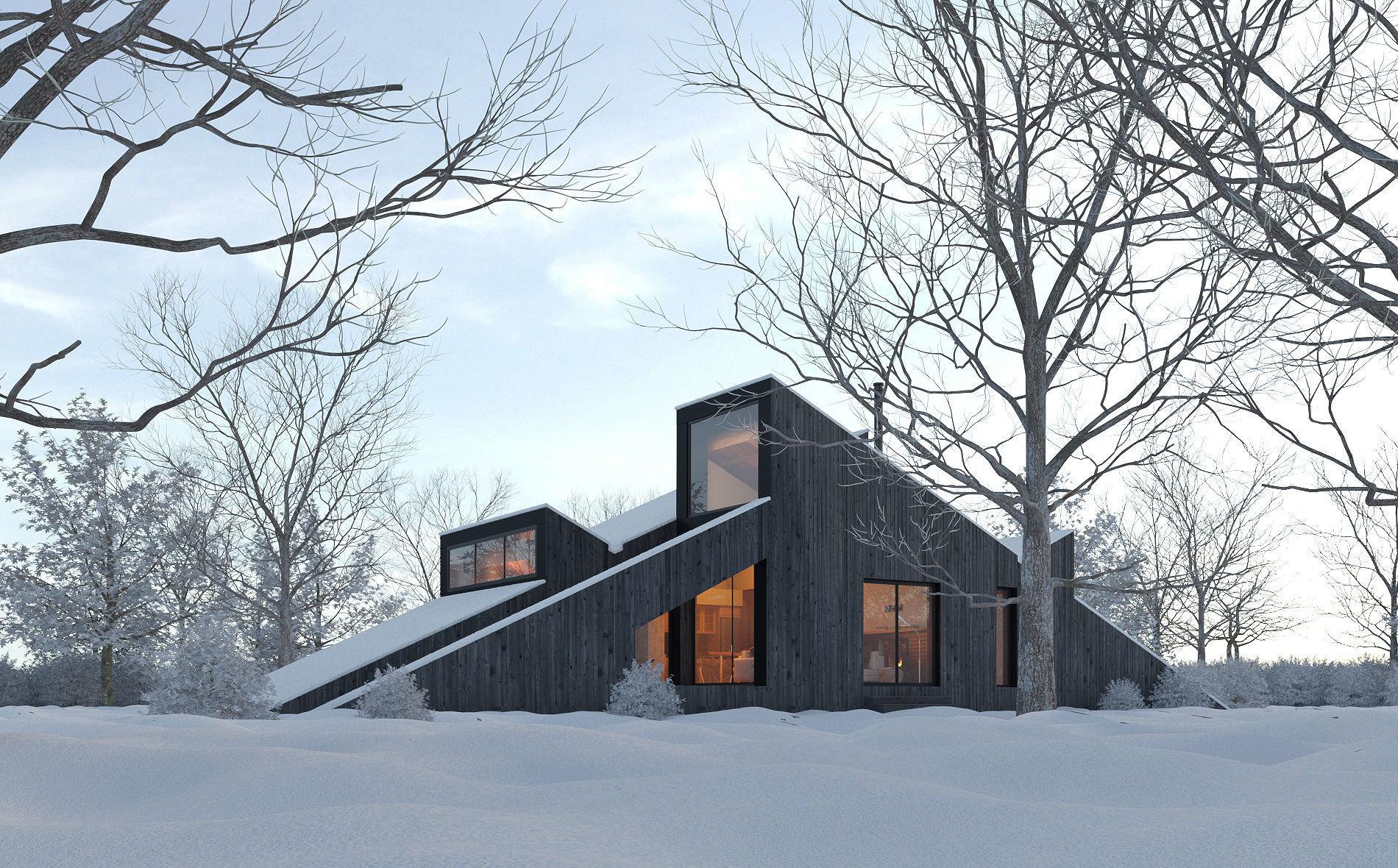 Winter Cabin House Exterior