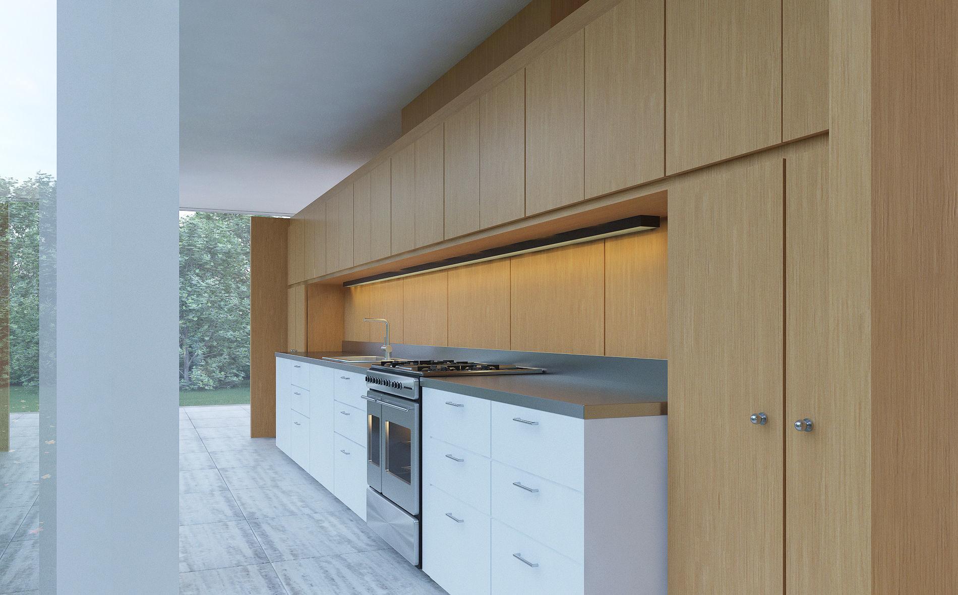 Farnsworth House Kitchen