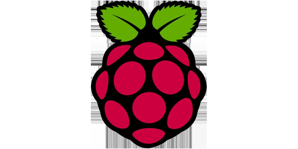 Logo - Raspberry Pi