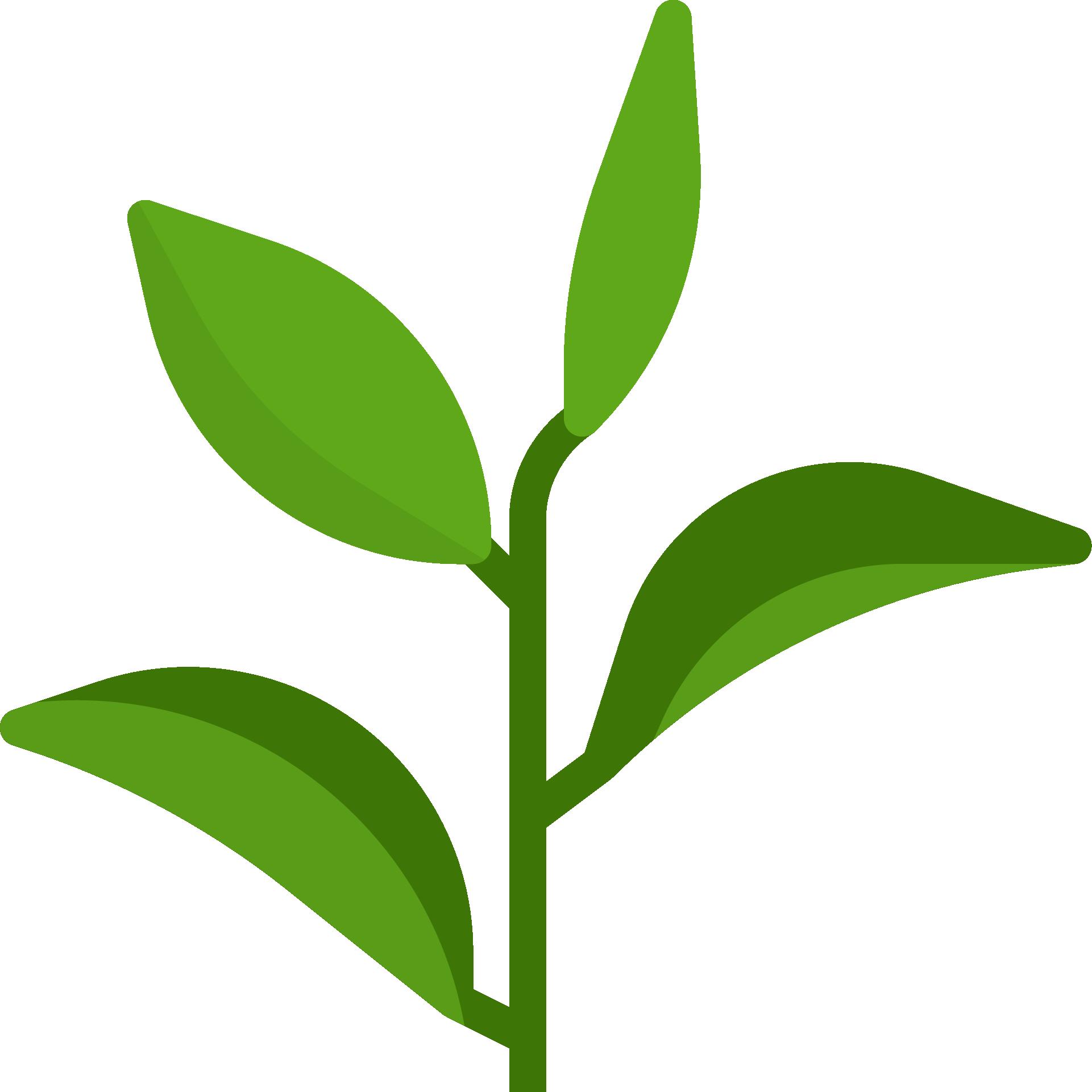 Maitrisez votre impact environnemental