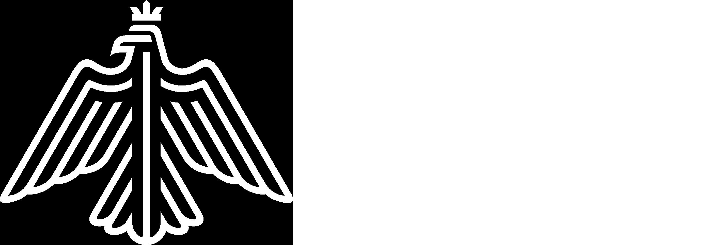 rivia digital icon