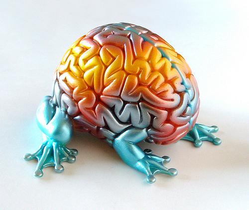 Neuroplasticity and Brain Training