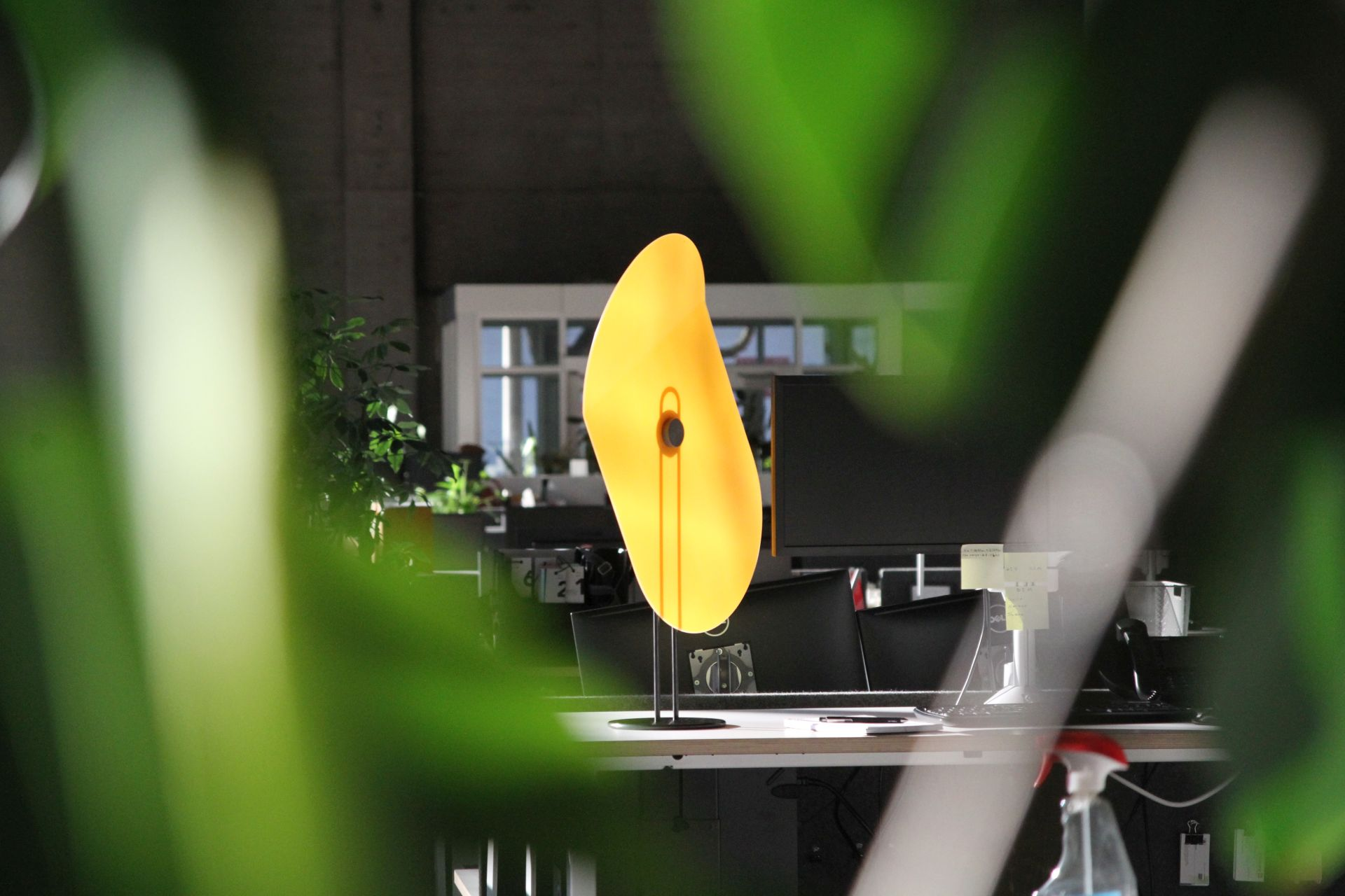 A large image of a glowing yellow Taskshade seen through some out of focus plants.
