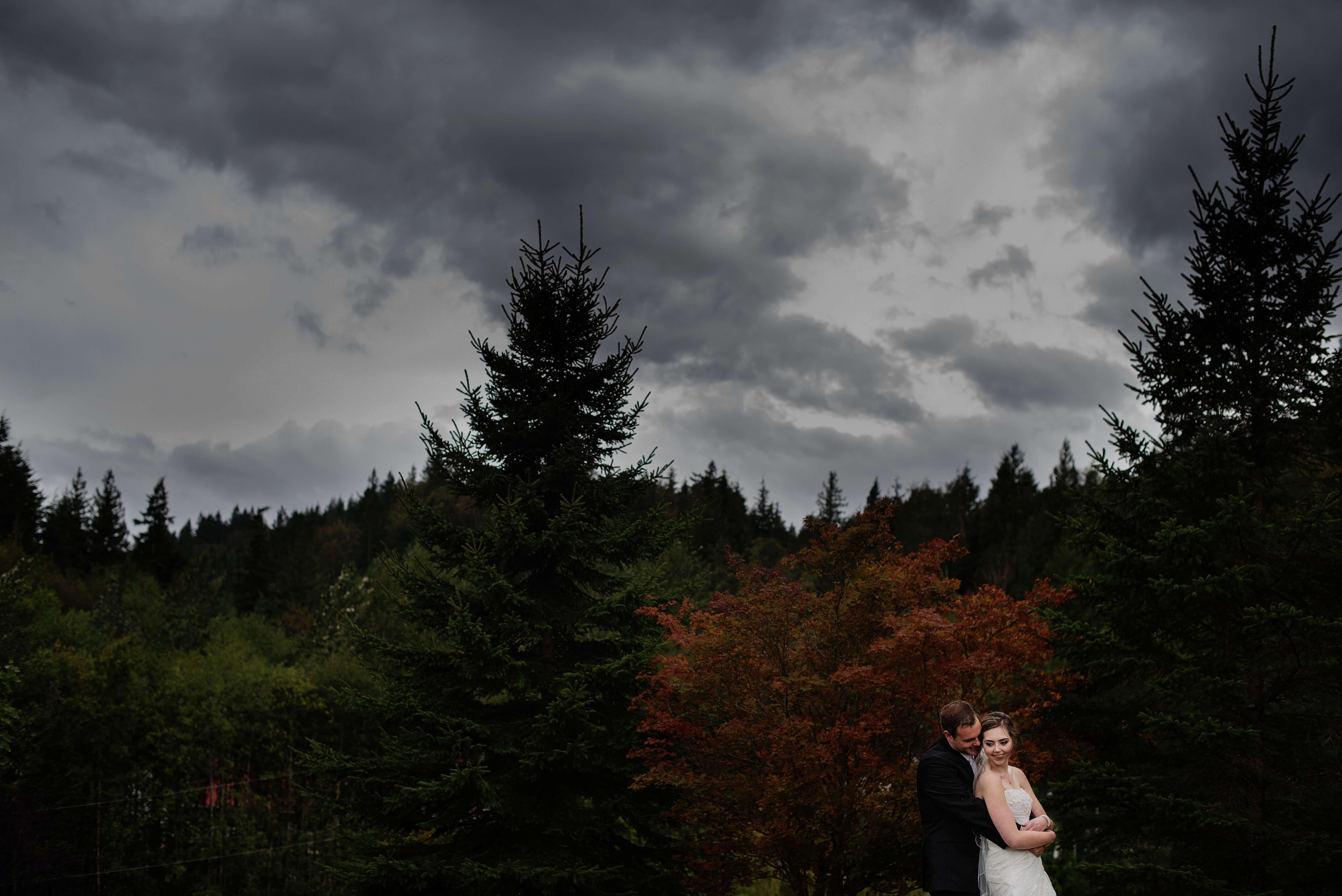 Stormy Backyard Wedding