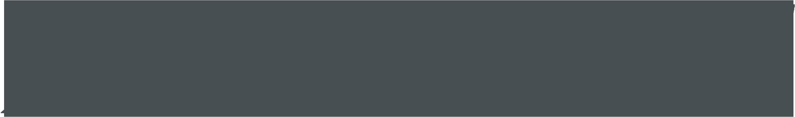 Ash Management Group Logo