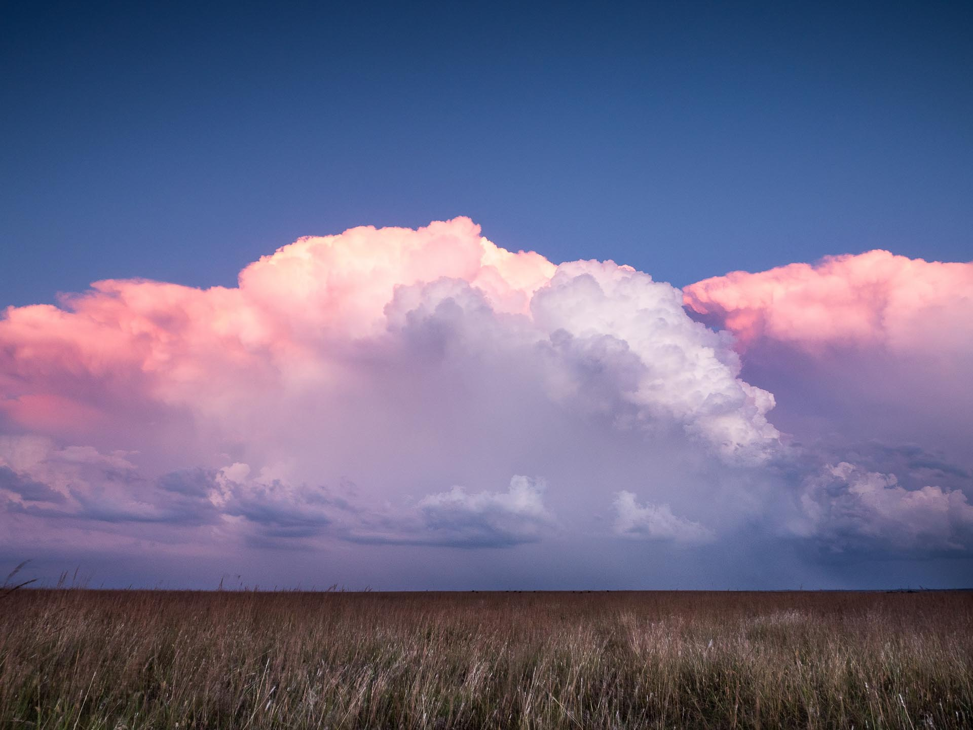 A stormy purple sky over a flat prairie landscape.