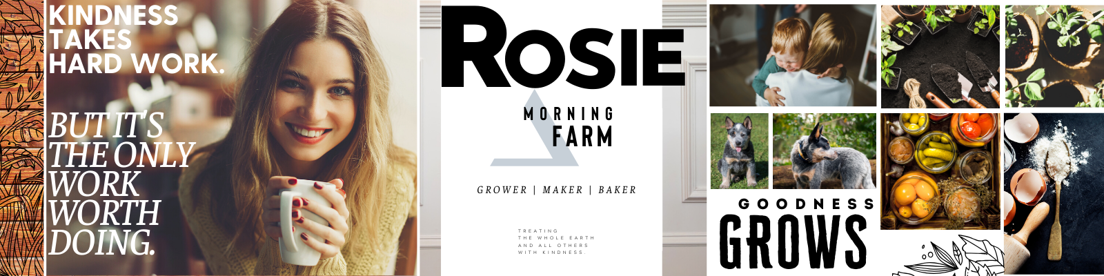 Brand stylescape created by Owl Street Studio for Rosie Morning Farm