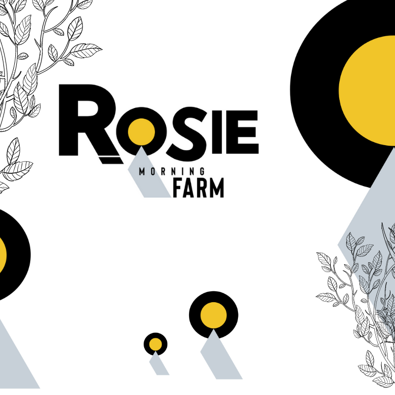 Logo created by Owl Street Studio for Rosie Morning Farm