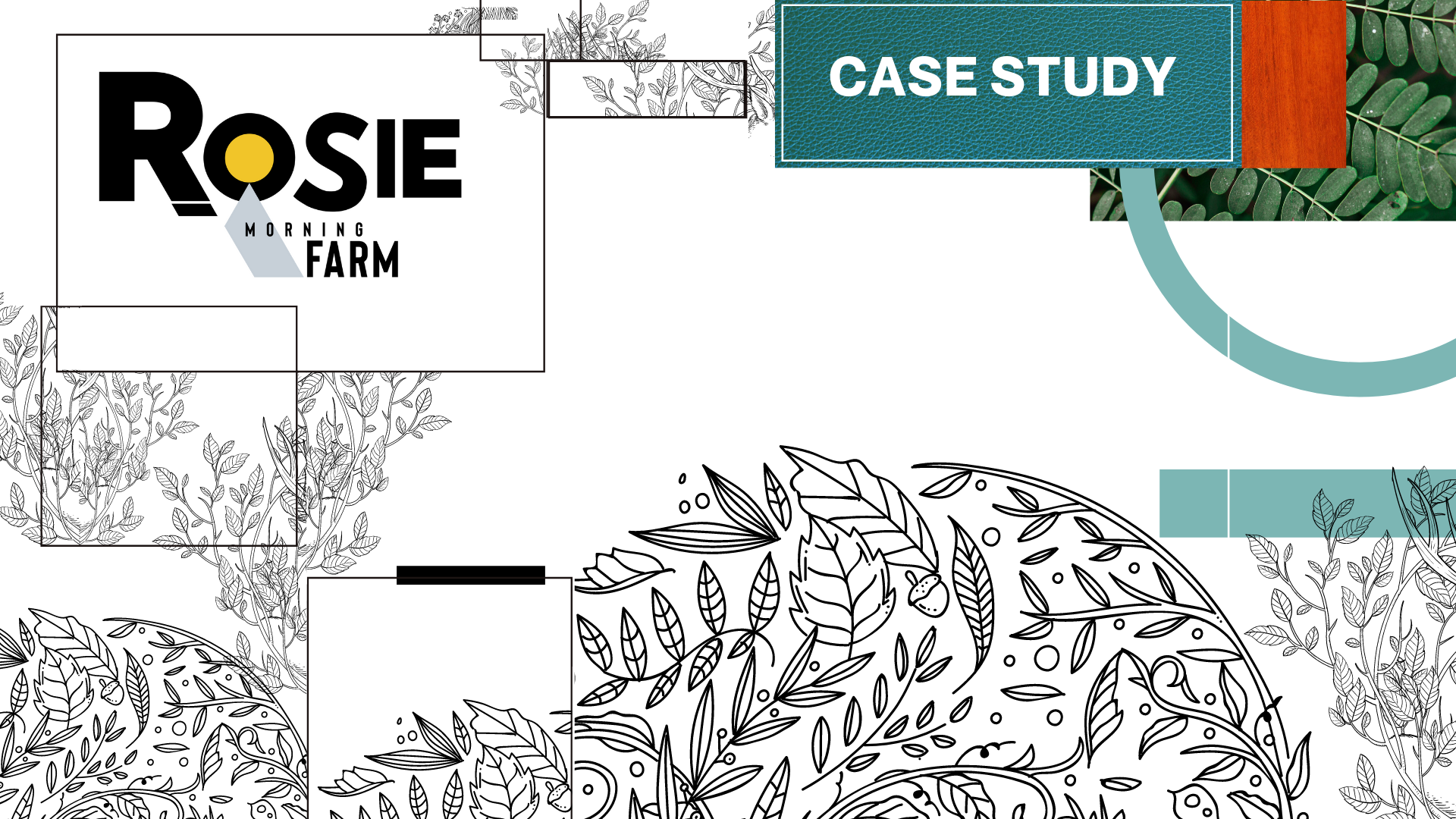 Title card of Rosie Morning Farm case study by marketing and design agency Owl Street Studio