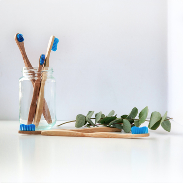 Toothbrushes and leaves