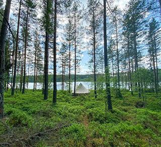 WoodFrame - Vänerskärgården