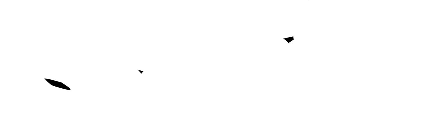 corgo-logo