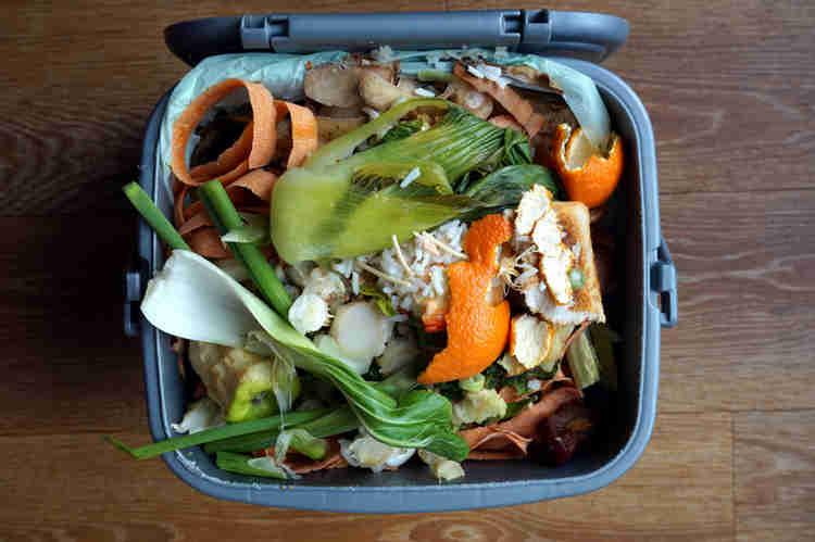 Morar de maneira sustentável: composteira
