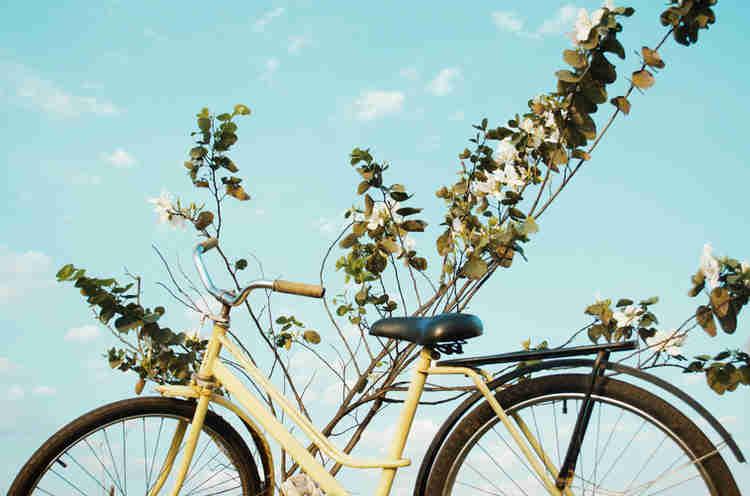 Morar de maneira sustentável