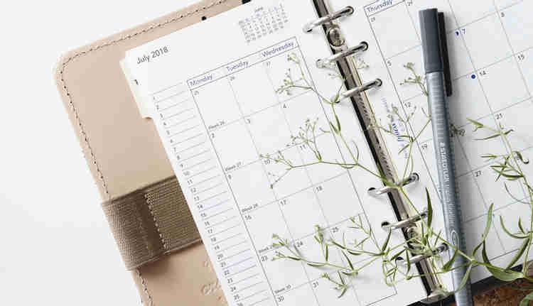Como escolher um colega de quarto: agende um horario