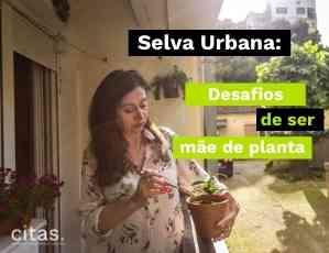 Selva Urbana - os desafios e as alegrias de ser mãe de planta