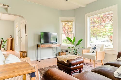 Living room with TV, plant and couch