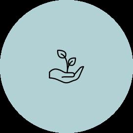 pflanzlich