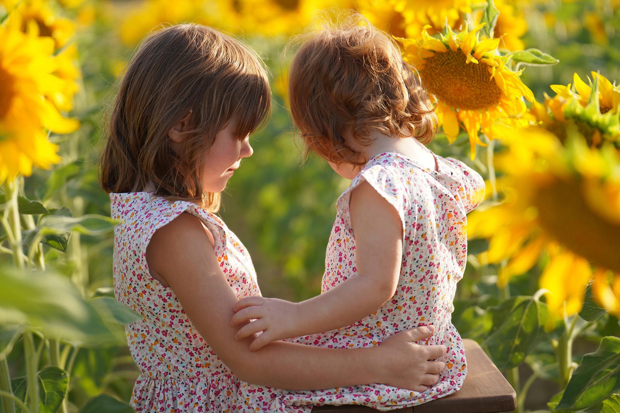 shooting photo enfants en Vaucluse La Tour d'AIgues dans un champs de tournesols
