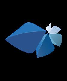 image d'illustration suite Revit Autodesk