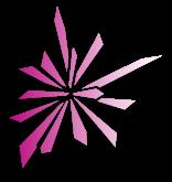 logo siniat