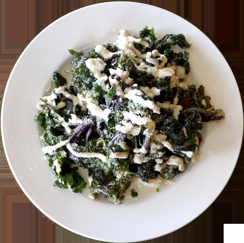 Crispy Kale Blossoms | Parmesan, Fresh Herbs, Truffle Aioli