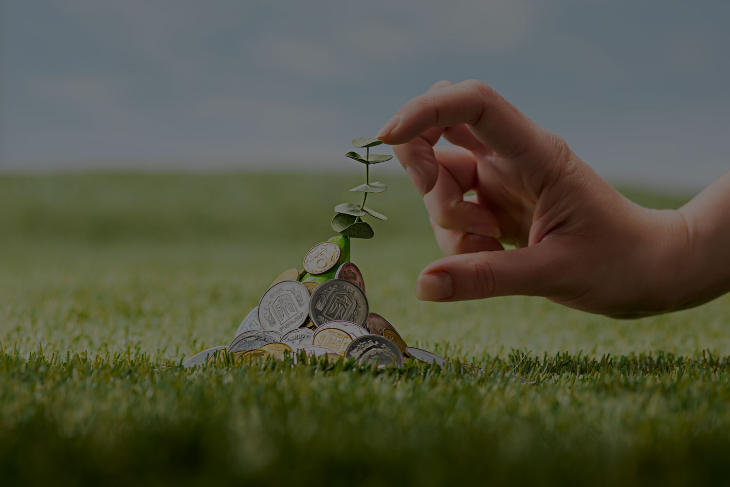 Spending Doesn't Hurt Anymore: Jar App Helps You Invest With Every Spend!