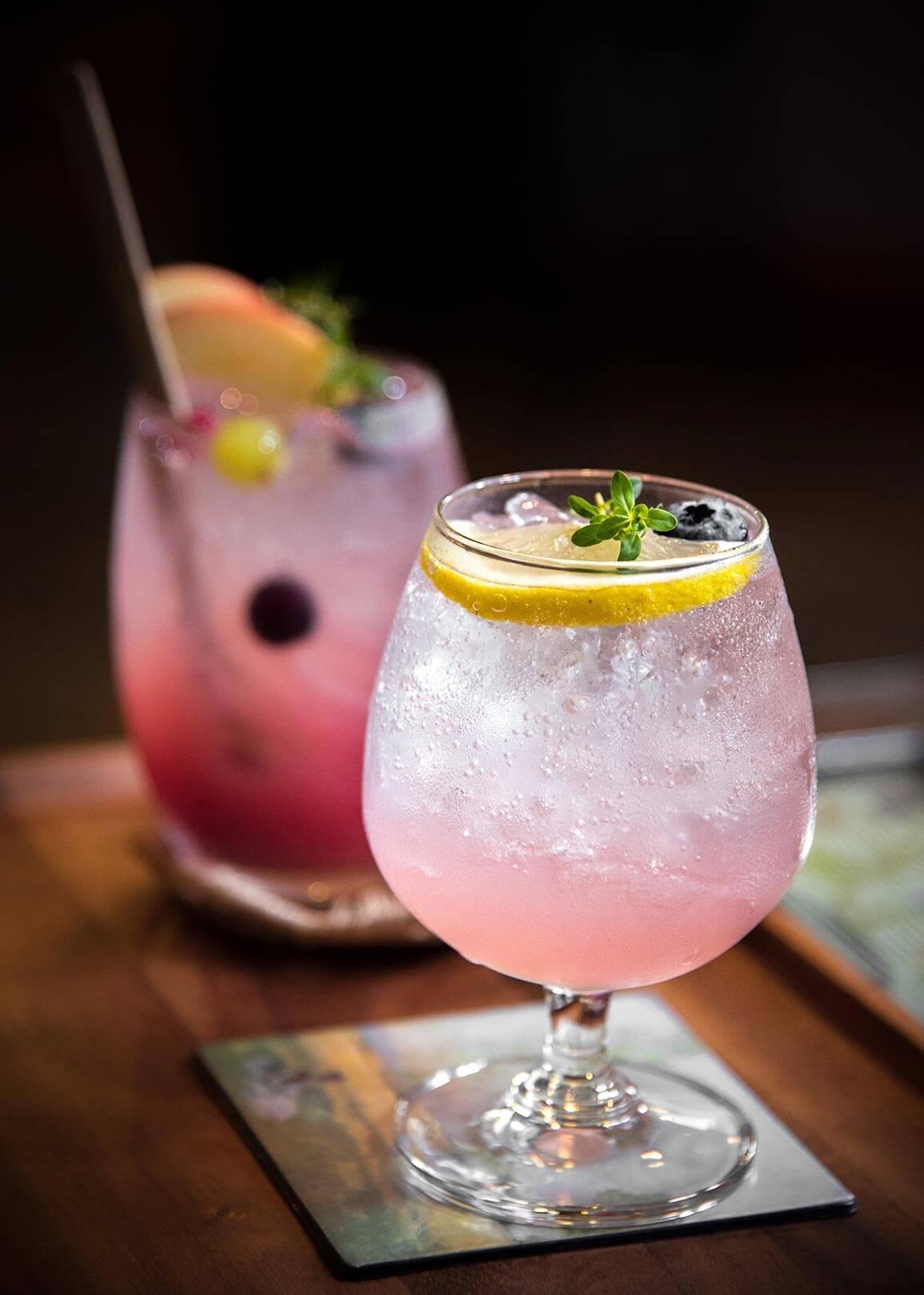 Frisse cocktail met cranberry en sinaasappel, vodka, afbeelding
