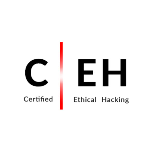 Ethical Hacking certification image