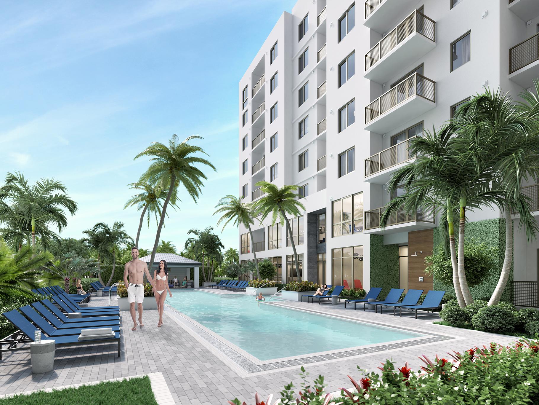 Pool lounge chairs palm trees