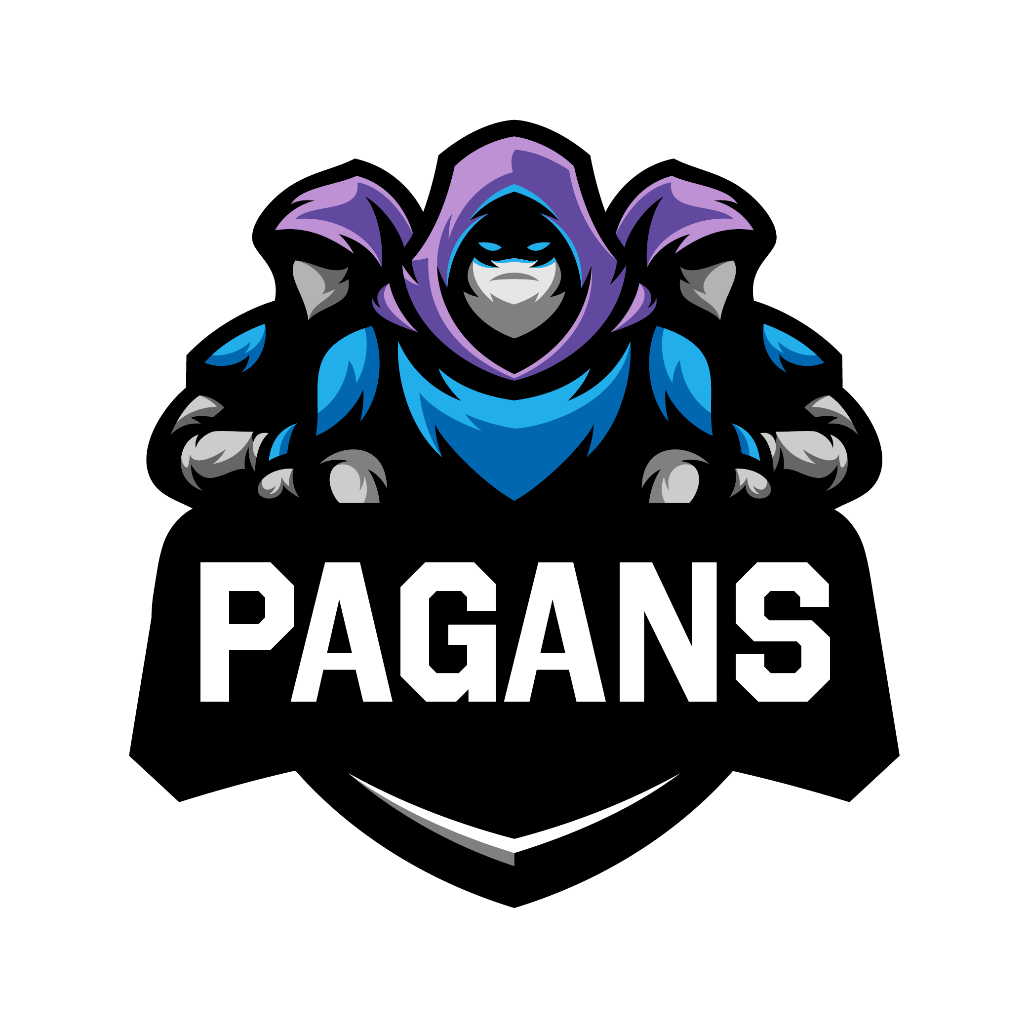 Pagans Volleyball Graphic