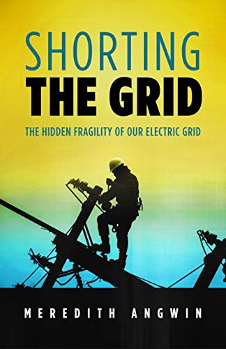 Shorting the Grid