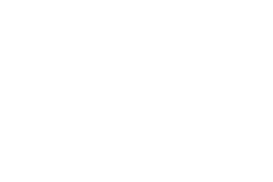 Abdiel Featured on New York Times