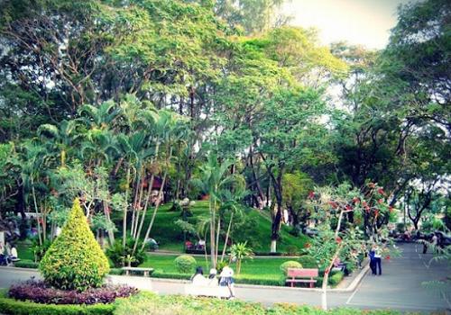 Công viên Hoàng Văn Thụ, Đ Hoàng Văn Thụ, Phường 2, Tân Bình, TPHCM