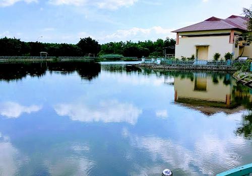 Công viên Văn hóa Láng Le Bàu Cò, Đ Lê Chính Đang, Lê Minh Xuân, Bình Chánh
