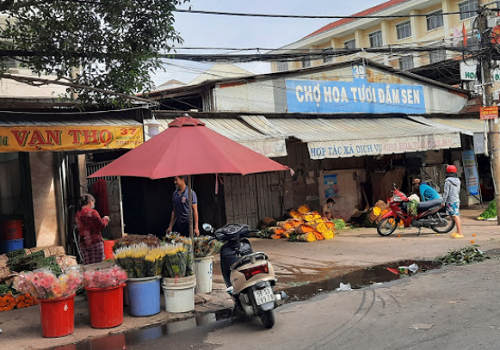 Chợ Hoa tươi Đầm Sen, Đ Nguyễn Văn Phú, Phường 5, Quận 11, TPHCM