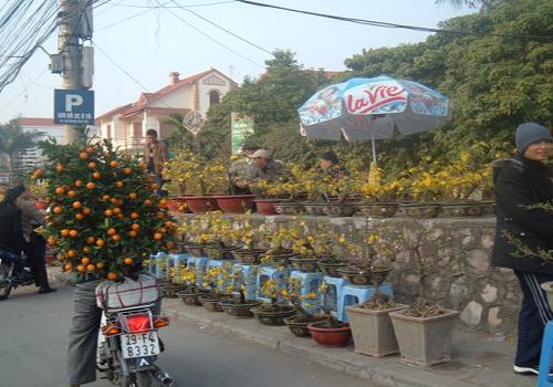 Chợ Đồ Cũ Quảng An Âu Cơ - 236 Âu Cơ, Quảng An, Tây Hồ, Hà Nội