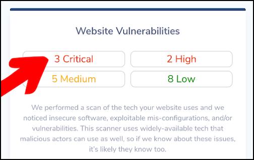 Lightweight Web Vulnerability Scan