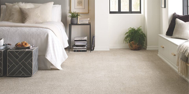 Carpet in a bedroom.