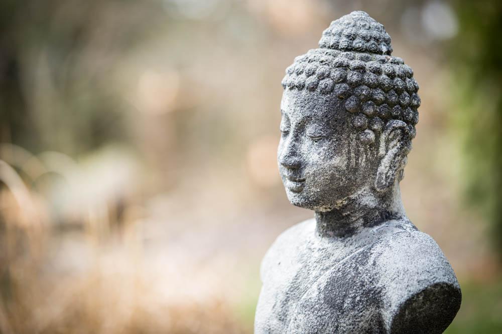 Buddha FIgur in Natur