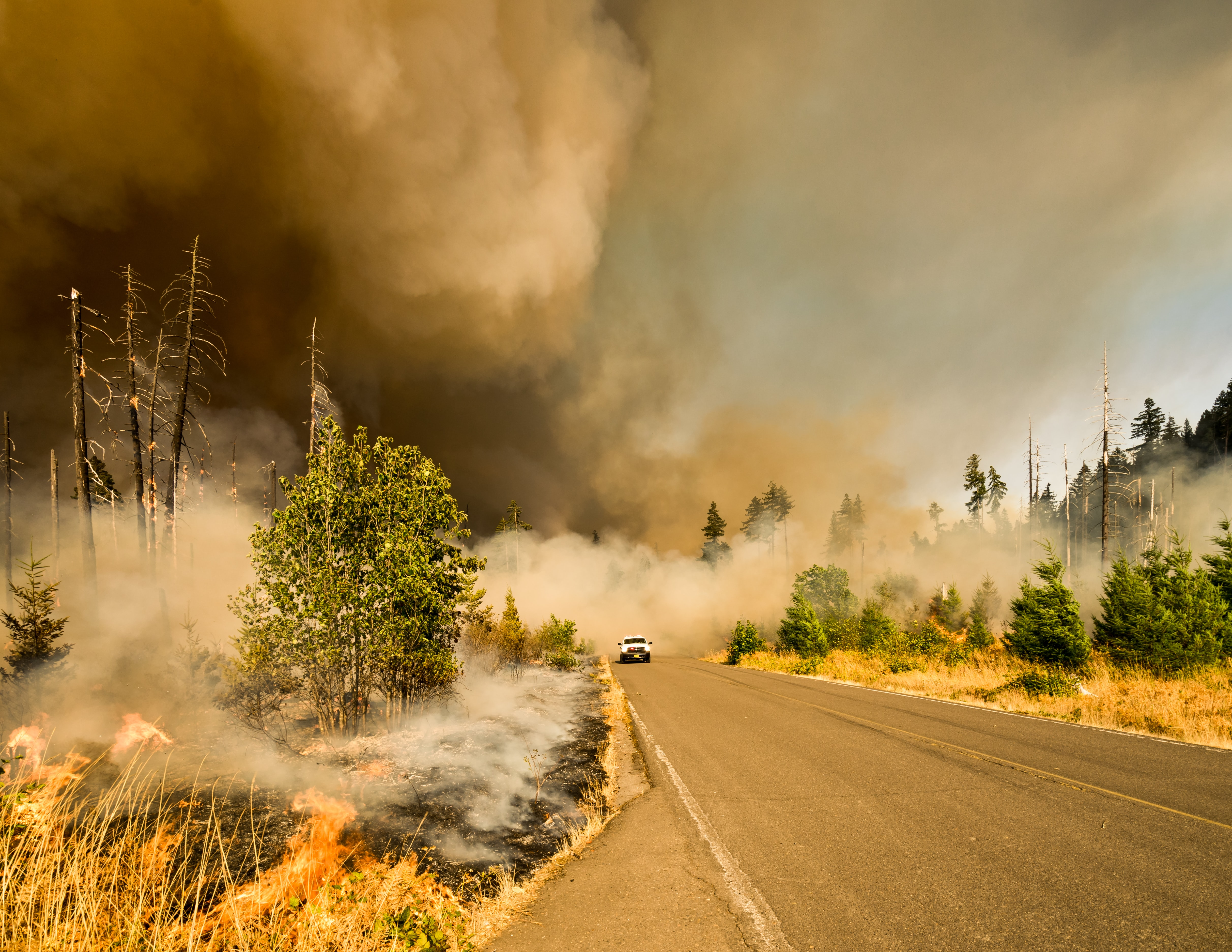 How can wildfire insurance providers leverage air quality data ?